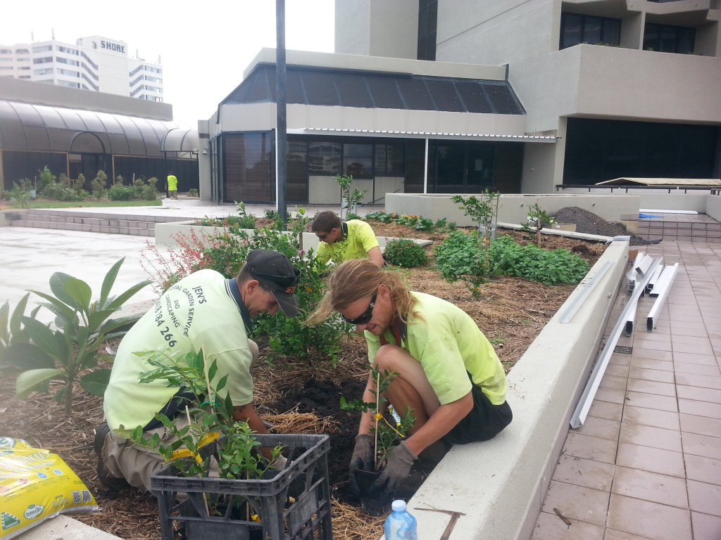 Students attending the food forest at the QT Hotel.