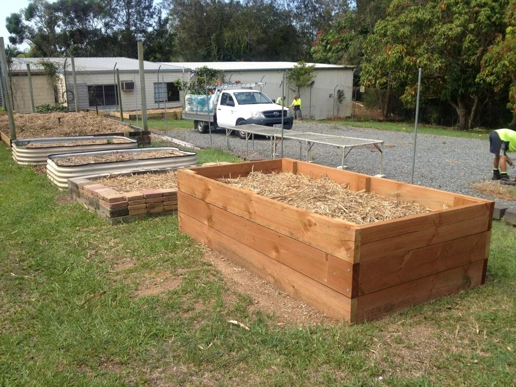The organic garden at Southport High School.