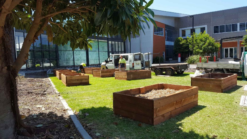 Vegetable boxes at the Gold Coast Hospital.
